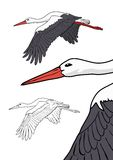 Flying stork, vector illustration Royalty Free Stock Images