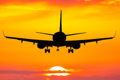 Flying on a sunset Stock Photography