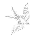 Flying swallow or swift tattoo design. Stock Photo