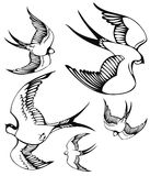 Flying swallows. A set of sketches of flying swallows Stock Photography
