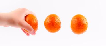 Flying tangerine Stock Photos