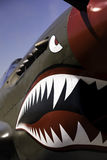 Flying Tiger nose art Royalty Free Stock Image