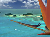 Free Flying To Exotic Destination. Royalty Free Stock Images - 4449239