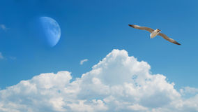 Flying to the moon Stock Images