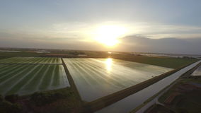 Flying to the sunrise over the Italian rice fields stock video