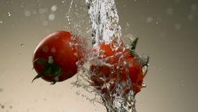 Flying tomatoes on a neutral background water a jet of water. stock video footage