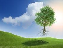 Flying tree Royalty Free Stock Photo