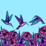 Flying tropical stylized hummingbirds with flowers Stock Photos