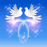 Flying two doves and sparkling salute. Flying two white doves in the sky and sparkling salute Stock Image