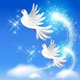 Flying two doves and sparkling salute. Flying two white doves in the sky and sparkling salute Stock Photo