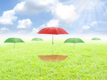 Flying umbrellas. Flying umbrellas on the grass Stock Photography