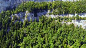 Flying upwards over forest and cliffs stock video footage