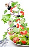 Flying vegetables - salad ingredients. Stock Image