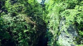 Flying through vintgar gorge Stock Photo