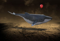 Flying Whale, Goals, Success, Risk royalty free stock photography