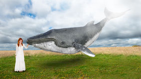 Flying Whale, Peace, Hope, Inspiration Royalty Free Stock Images