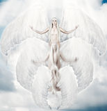 Flying white angel with big wings. Flying white angel in move with big wings to sun light Royalty Free Stock Images