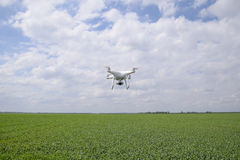Flying white quadrocopters over a field of wheat royalty free stock photography