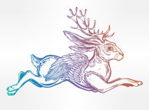 Flying winged jacalope magical creature. Stock Image