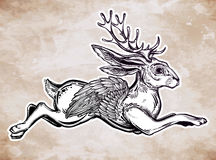 Flying winged jacalope magical creature. Royalty Free Stock Images