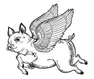 Flying winged pig illustration. Flying winged pig. Tattoo artwork of a piglet, linear fantastic animal. Isolated vector illustration. Template for card, poster Royalty Free Stock Images