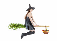 Flying witch Royalty Free Stock Image