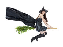 Flying witch Royalty Free Stock Photo