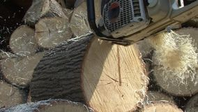 Flying wood shavings from a chain saw stock video footage