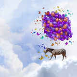 Flying zebra Royalty Free Stock Images