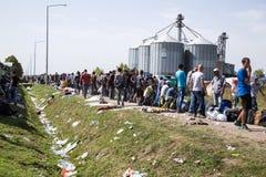 Flyktingar som bildar en väntande linje i Tovarnik Arkivfoto