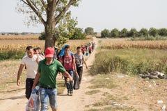 Flyktingar som går till och med fälten nära Kroatien Serbien, gränsar, mellan städerna av Sid Tovarnik på den Balkans rutten royaltyfri bild