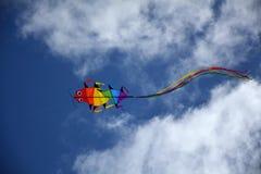 Flyng dell'aquilone nel cielo Fotografia Stock Libera da Diritti