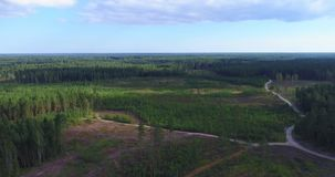 Flyover aerial shot of forest and deforestation. stock footage