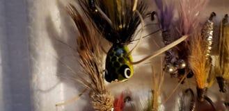 Flys de pêche photo libre de droits