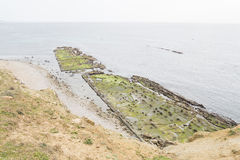 Flysch on the coast of the Strait Natural Park, Cadiz, Spain Royalty Free Stock Photography