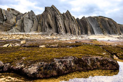 Flysch detail Royalty Free Stock Images