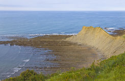 Flysch of Zumaia, declared protected biotype. Stock Photography