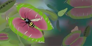 flytrap venus ilustracja wektor