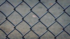 Flytta sig förbi staketet In The Morning lager videofilmer