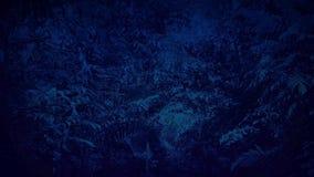 Flytta sig under den täta djungelmarkisen på natten stock video