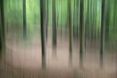 Flyttande träd i skogen fotografering för bildbyråer