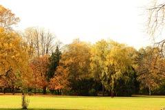 Reflexioner av hösten Royaltyfria Foton