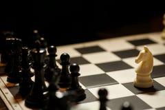 Flyttning för vit häst för schack royaltyfri fotografi
