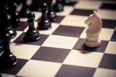 Flyttning för vit häst för schack royaltyfri foto