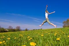 Fêmea no prado Imagem de Stock