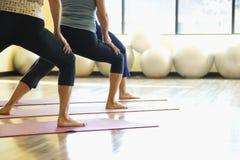 Fêmeas adultas na classe da ioga. Fotos de Stock Royalty Free