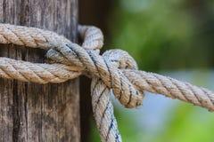 Fnuren av det tjocka repet som binds runt om en träinsats Arkivbild
