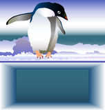 fo办公室pingvin范例 免版税库存图片