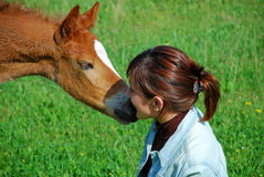 Foal And Girl Stock Image