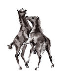 Foal oriental ink painting, sumi-e Royalty Free Stock Photos
